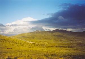 Paesaggio delle Falkland/Malvinas (fonte: wikipedia)